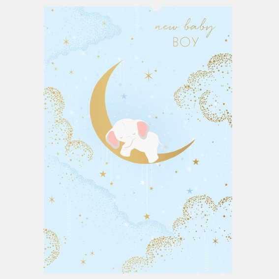 Elephant Baby Boy Card