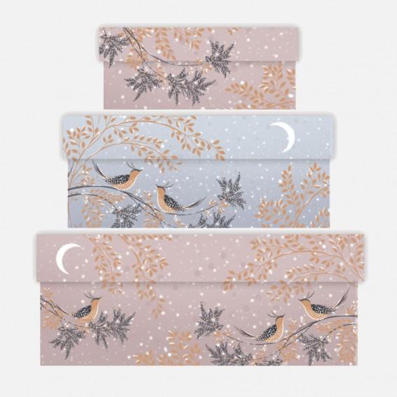 Winter Snow Birds Gift Boxes - Set of 3