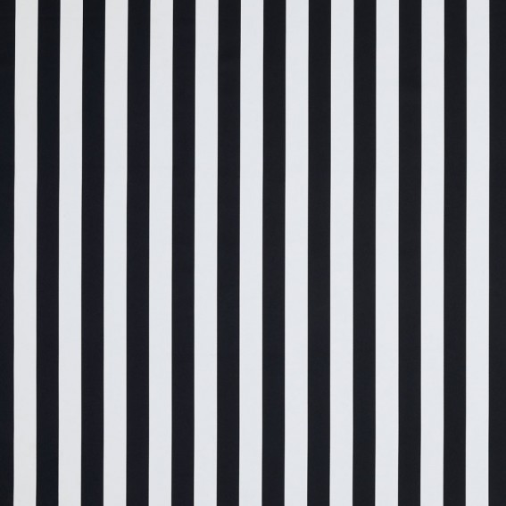 Monochrome Stripe Fabric