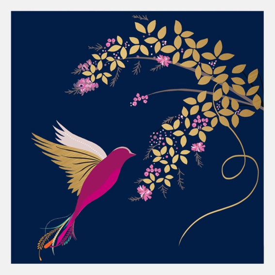 Navy Hummingbird Card