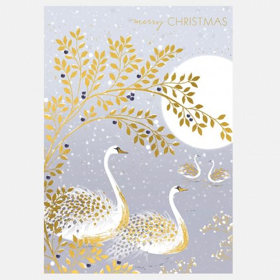 Snow Swans Christmas Card