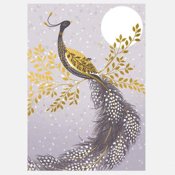 Snow Peacock Christmas Card