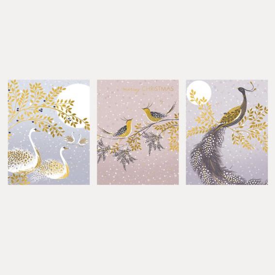 Snow Birds Trio Christmas Cards - Assorted Set of 12