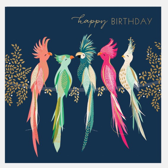 Tropical Birds Happy Birthday Card